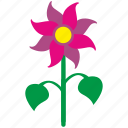 bud, flower, nature icon