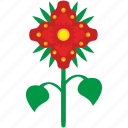 bud, flower, grow, nature, plant icon