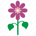 bud, flower, grow, plant icon