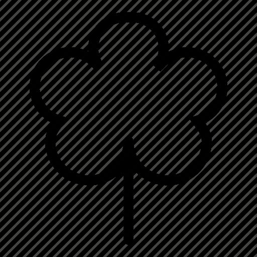 beauty, flower, garden, nature, park, plant, spring icon