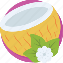 coco, coconut, healthy food, nutrition, tropical fruit icon