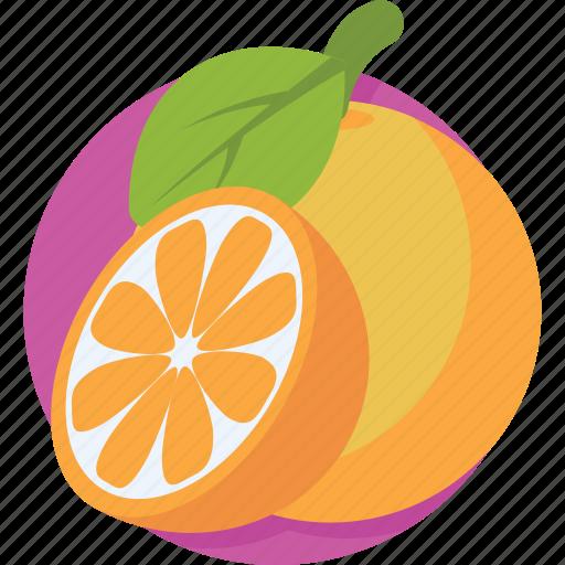 citrus fruit, fruit, healthy diet, orange, organic icon