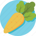 carrot, healthy diet, healthy food, organic, root vegetable icon