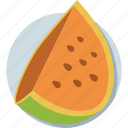 cantaloupe, fruit, juicy fruit, tropical fruit, watermelon icon