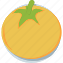 diet, nutrition, organic, tomato, vegetable icon