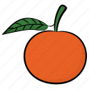 citrus, food, fruit, healthy diet, orange, ripe orange icon