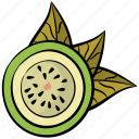 food, fruit, healthy diet, kiwi, tropical fruit icon