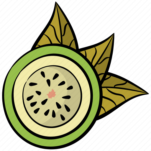 Food, fruit, healthy diet, kiwi, tropical fruit icon - Download on Iconfinder
