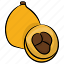 food, fruit, healthy fruit, loquat, prune fruit icon