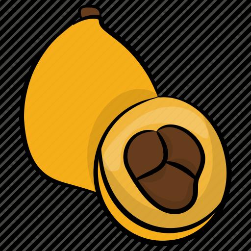 Food, fruit, healthy fruit, loquat, prune fruit icon - Download on Iconfinder