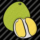 apple, fruit, health, healthy diet, healthy food