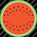 food, tropical fruit, cantaloupe, fruit, watermelon icon