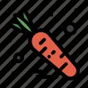 carrot, food, vegetable