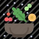 cucumber, lettuce, salad