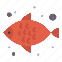 fish, food, sea, water