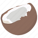 coconut, coconut icon, food, fruit, fruit icon, spring icon