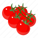 d524, food, isometric, object, plant, red, tomato