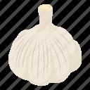food, fresh, garlic, harvest, isometric, natural, object