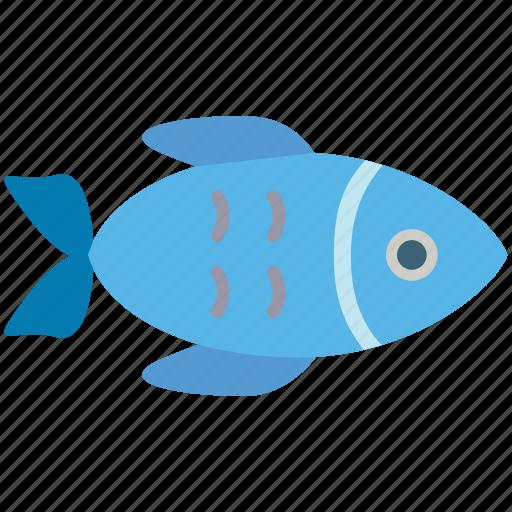 fish, food, sea food, seafood icon