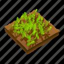 crops, farm icon
