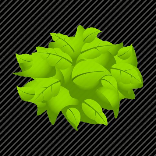 Crops, farm, leaves, lettuce, vegetable icon - Download on Iconfinder