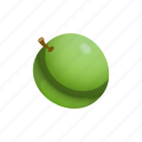 food, fruit, grape, green icon