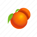 food, fruit, orange icon