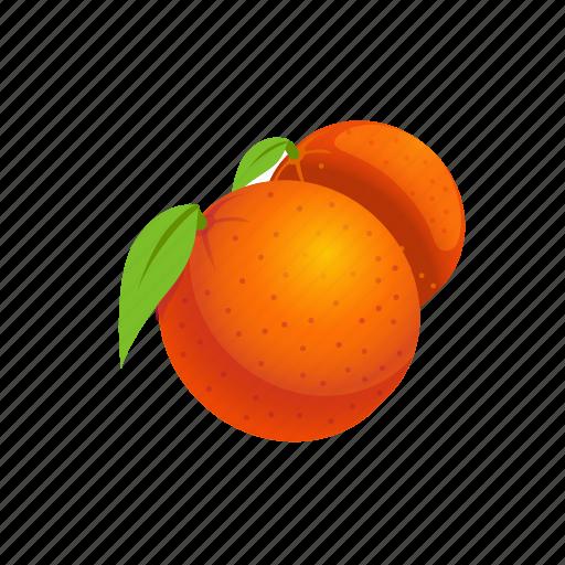 Food, fruit, orange icon - Download on Iconfinder