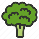broccoli, cauliflower, food, nutrition, vegetable icon