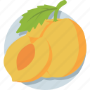 apricot, fruit, healthy food, organic, peach icon