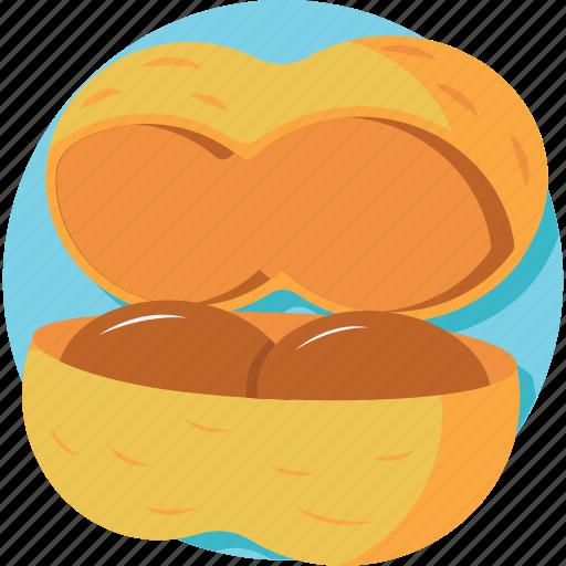 coconut, healthy food, nutrition, tropical fruit icon