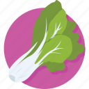 aglio, allium sativum, diet, garlic, spice icon