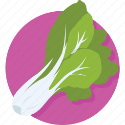 aglio, allium sativum, diet, garlic, spice icon