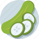 courgette, cucumber, cucumis, vegetable, zucchini icon