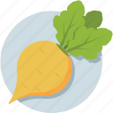 fodder radish, healthy food, organic, turnip, vegetable icon