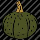 butternut, food, halloween vegetable, pumpkin, vegetable icon