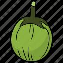 ash gourd, diet, food, healthy vegetable, vegetable