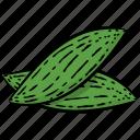 bitter gourd, bitter melon, natural diet, natural food, vegetable icon