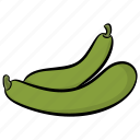 bottle gourd, calabash, cucuzza, gourd, green vegetable, vegetable icon