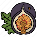dry fruit, fig, food, fruit, natural diet, pulpy fruit icon