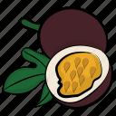 food, fruit, natural diet, passion fruit, tropical fruit icon
