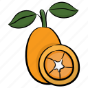 cantaloupe, food, fruit, honey dew, tropical fruit icon