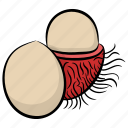 food, fruit, lychee, natural diet, pulpy fruit icon