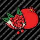 food, fruit, pomegranate, punica granatum, spherical fruit