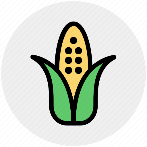 agriculture, corn, food, maize, sweet corn, syrup, vegetables icon