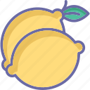 citrus fruit, food, fruit, lemon icon