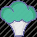 brassicaceae vegetable, cauliflower, diet, healthy diet icon