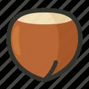 food, hazelnut, kernel, nut, nutshell, vegetable