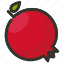 fruit, juicy, pomegranate icon