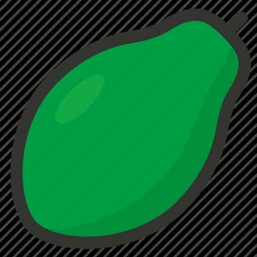 fruit, papaya icon